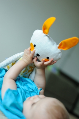 buckwheat-hull-toy-hare